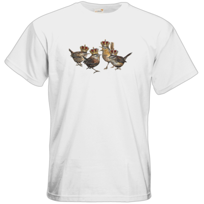 Motiv: T-Shirt Premium FAIR WEAR - Vogelmenschen - Quatuor Coronati