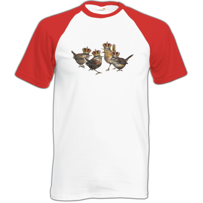 Motiv: Baseball-T FAIR WEAR - Vogelmenschen - Quatuor Coronati