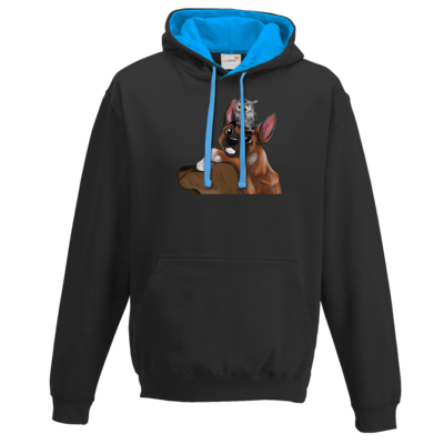 Motiv: Two-Tone Hoodie - friends