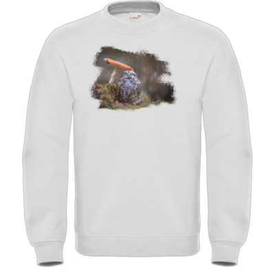 Motiv: Sweatshirt FAIR WEAR - Poldi Pilz