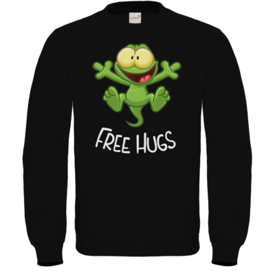 Motiv: Sweatshirt FAIR WEAR - FreeHugs