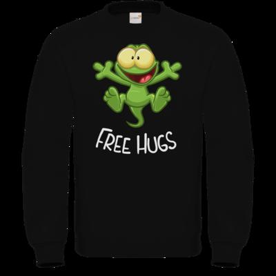 Motiv: Sweatshirt FAIR WEAR - FreeHugs