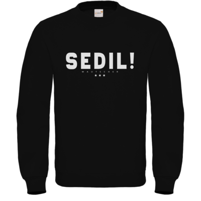 Motiv: Sweatshirt FAIR WEAR - Sedil!