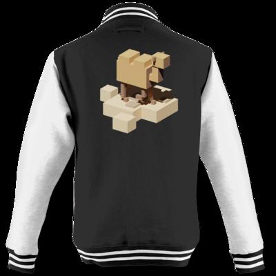 Motiv: College Jacke - Unrailed Camel