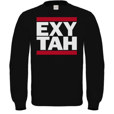 Motiv: Sweatshirt FAIR WEAR - ExyTah