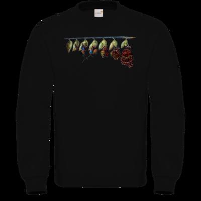 Motiv: Sweatshirt FAIR WEAR - Metamorphose