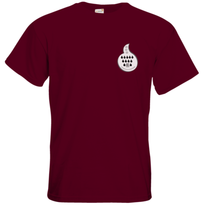 Motiv: T-Shirt Premium FAIR WEAR - Coolonia Flamme