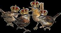 Vogelmenschen - Quatuor Coronati
