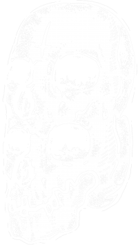 Twin Skull