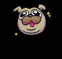 fritzi - cute pug