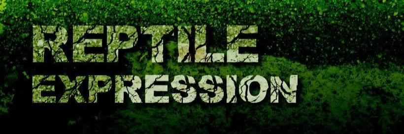 Reptile Expression -