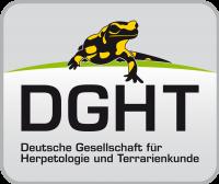 DGHT-Shop – DGHT-Shop