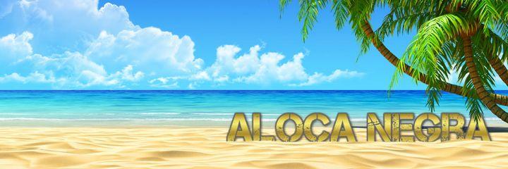 AlocaNegra - Hazienda Shop